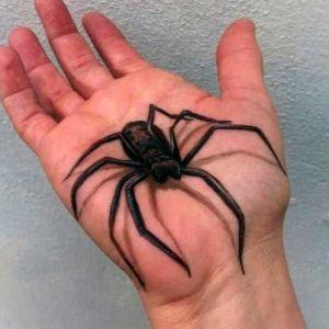 tatuaje 3D araña
