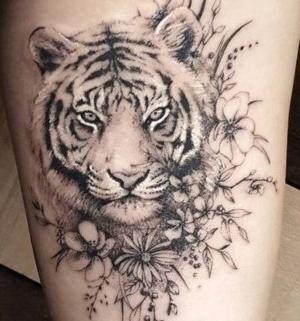 tatu de tigre