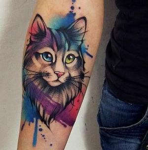 tatuaje de gato watercolor