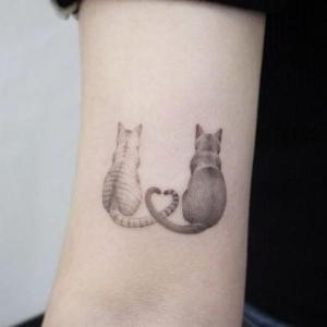 tatuaje delicado de gatos