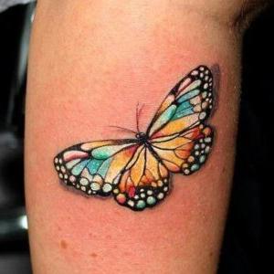 diseño de tatuaje de mariposa (1)