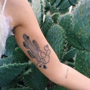 cactus tatu