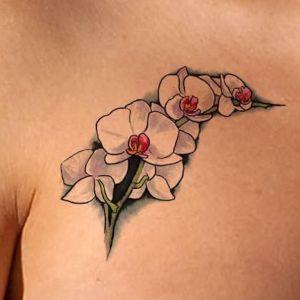 tatuaje de orquidea para mujer