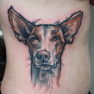 tatuaje de perro podenco